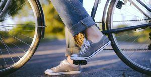 Damcykeln – vad är skillnden?